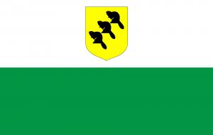 Flag of Põlva (County)