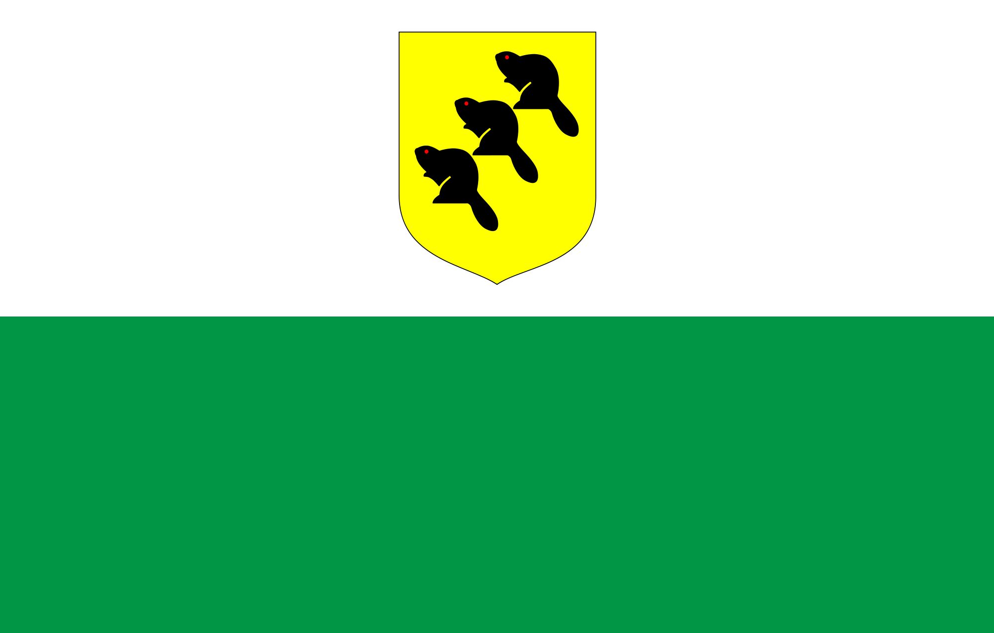 Flag of Põlva (County)